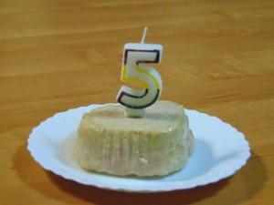 piąte urodziny naszej ukochanej labradorki Demi